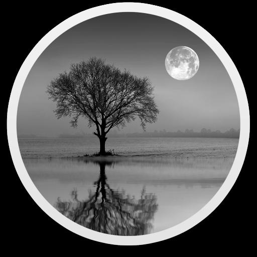 Reflect Studio for Mac(图像镜面倒影特效制作工具)v3.0免激活版